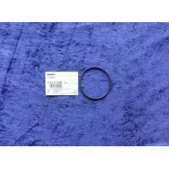 Bosch o-ring 2410210065