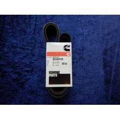 Cummins flat belt F/QSB 5,9 397512700